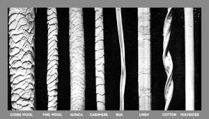 wool fibers microscope scales