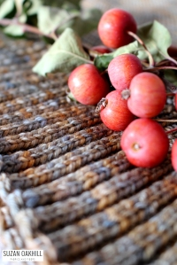 Mara-apples-detail side 2_klein